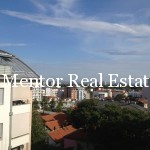Vračar 150sqm apartment for rent  (15)