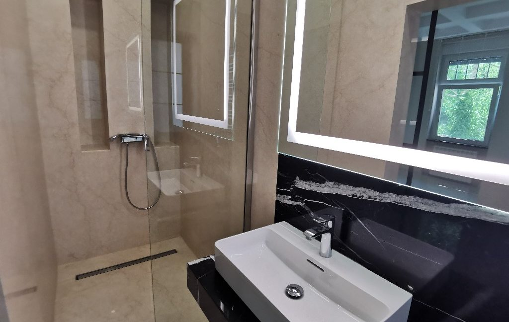 Vračar 180sqm apartment for rent (3)