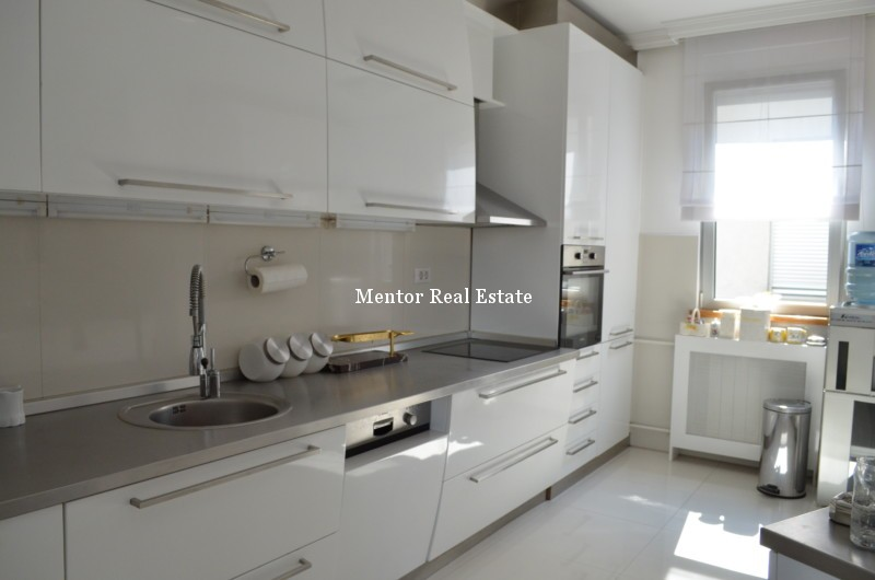 Vračar 230sqm apartment for rent (11)