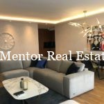 Vracar 100sqm apartment for rent (15)