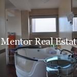 Vracar penthouse apartment (5)