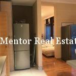 Zvezdara 90sqm furnished apartment for rent (7)