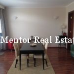 rent apartment dedinje (2)