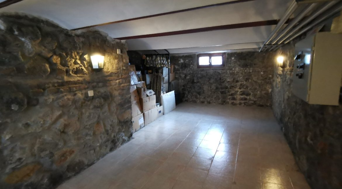 Rent lux house vračar (54)